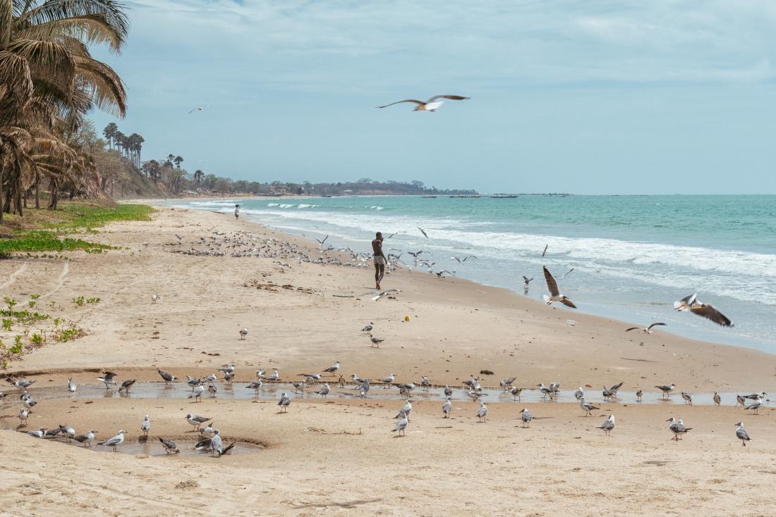 playa, gambia, áfrica, viaje